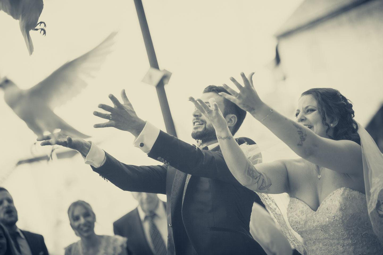Hochzeit von Manuela & Andreas, Tauben